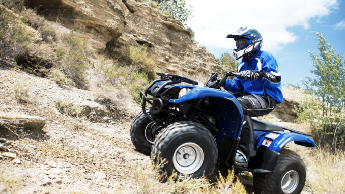 Download yamaha grizzly repair manual 80 125 350 400 550 for Yamaha grizzly 400
