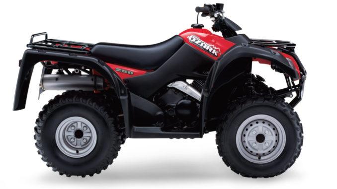 Suzuki LT-F250 Ozark Engine Stalls 2002 2003 2004 2005 2006 2007 2008 2009